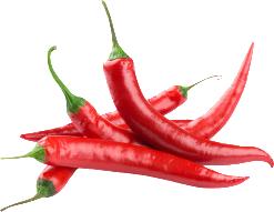 Vše o chilli